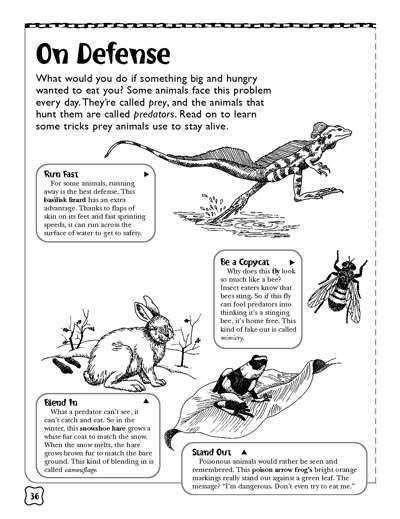 predators and prey worksheets printables scholastic