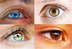 Colors, Eyes and Natural on Pinterest