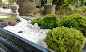 Parterre De Fleur Avec Cailloux : 1001 conseils pratiques pour une d co de jardin zen ~ Melissatoandfro.com Idées de Décoration