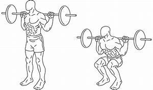 6 Week Workout Plan Leg Strengthening  U2013 Fitness Health
