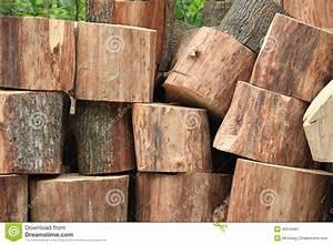Achat Tronc Arbre Decoratif : le tronc d 39 arbre a sci dans des morceaux le bois de ~ Zukunftsfamilie.com Idées de Décoration
