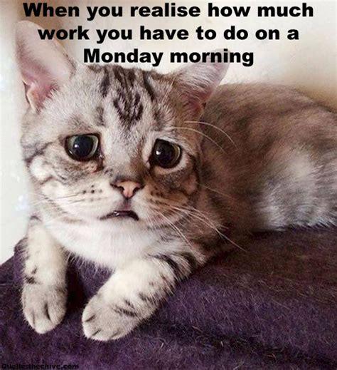 Monday Morning Memes - monday morning meme 28 images dragging to work monday s funny memes feelings laugh monday