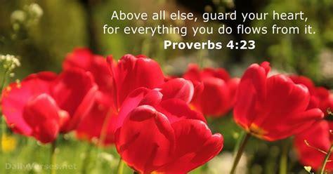 proverbs  bible verse   day dailyversesnet