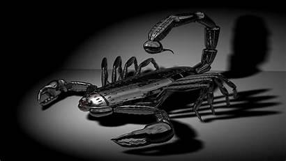 Scorpion Wallpapers Metal 3d Background Zodiac Scorpio