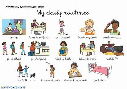 Routine Daily Dictionary