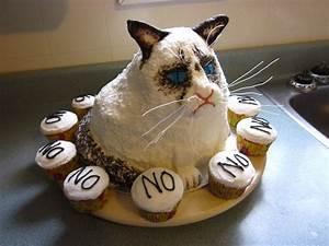 Grumpy Cat Cake #GrumpyCat #Cakes | Grumpy cat | Pinterest ...