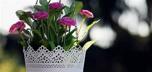 Makramee Garn Für Blumenampel : makramee f r topfpflanzen aus deinen wollresten ~ Frokenaadalensverden.com Haus und Dekorationen