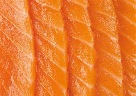 saikou mt cook sushi grade alpine salmon  zealand