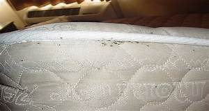 get rid of parasites or bed bugs from your sleeping With bed bugs inside mattress