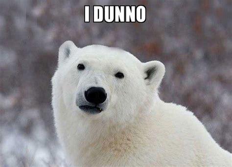 I Dunno Meme - i dunno popular opinion polar bear make a meme
