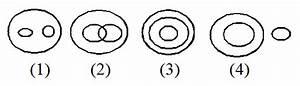 Venn Diagram Multiple Choice Questions Answers
