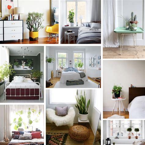Plants In Bedroom by Plants For Bedroom Marceladick