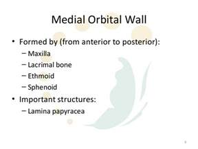 orbital fractures