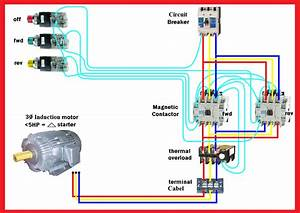 Motor Forward Reverse Wiring Diagram
