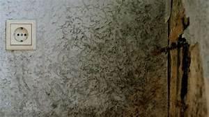 Nasse Wände Im Haus : feuchte w nde was sind die ursachen wohnen ~ Lizthompson.info Haus und Dekorationen