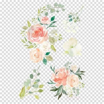 Watercolor Transparent Floral Flower Wreath Flowers Clipart