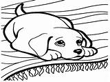 Barking Dog Drawing Coloring Pages Getdrawings sketch template