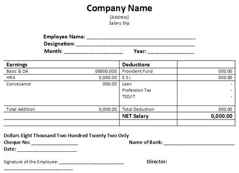 sample  salary pay slip paystub format