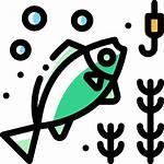 Fishing Icon Icons Flaticon