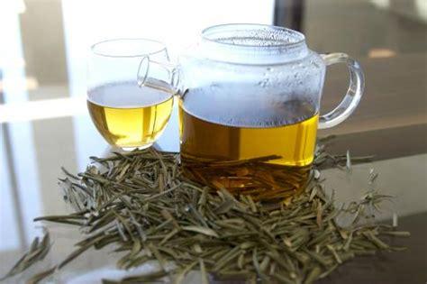 olive leaf tea benefits    side effects