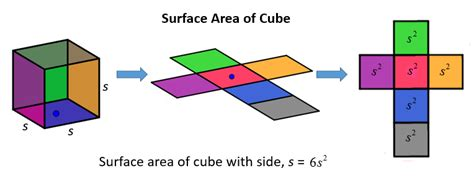 Surface Area Of Cube (solutions, Examples, Worksheets, Videos
