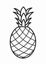 Coloring Fruit Printable Drawing Pineapple sketch template