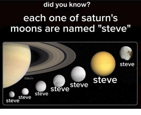 Saturn Meme - did you know each one of saturn s moons are named steve steve saturn steve steve steve steve
