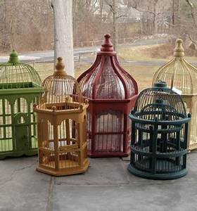 Decorative Birdcages - Wood & Iron Bird Cages for Display