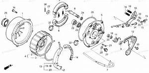 Honda Atv 1986 Oem Parts Diagram For Rear Brake    Panel