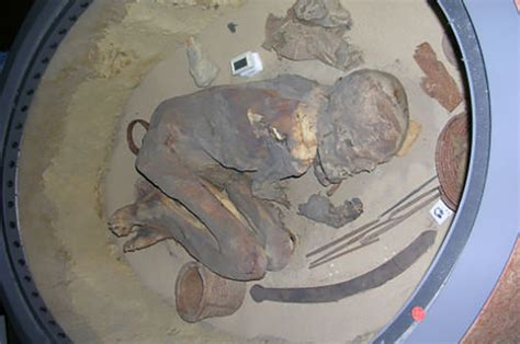 Egyptian mummy reveals incredible embalming recipe