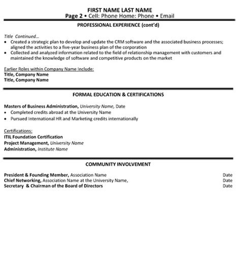 director technology resume sle template