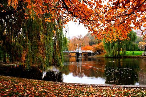 11 Mustdo Fall Activities In Boston