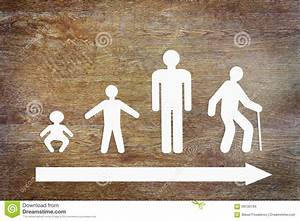 Different Stages Of Human Life Stock Illustration - Image ...