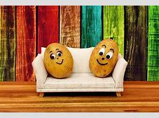 Couchpotatoes Lustig Kartoffeln · Kostenloses Foto auf Pixabay