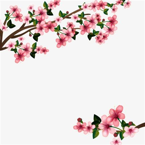 foto de Cherry Blossom PNG HD Transparent Cherry Blossom HD PNG