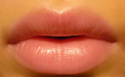 ingredients  soft beautiful lips health tips