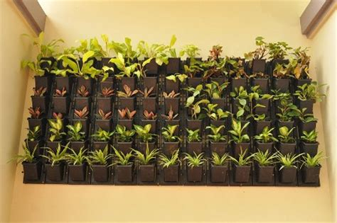 Vertical Garden Construction by Horticulture Landscaping Vertical Gardening