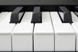 Wie Viele Arme Hat Ein Oktopus : wie viele tasten hat ein keyboard wissenswertes ber ~ A.2002-acura-tl-radio.info Haus und Dekorationen