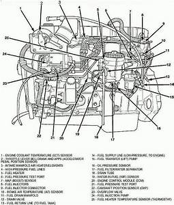 Heavy Duty Diesel Engine Diagrams