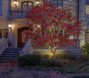 create an asheville christmas to remember with landscape With outdoor lighting asheville nc