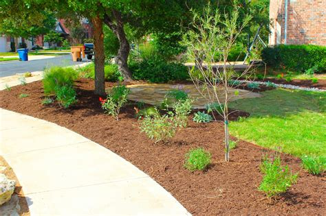 backyard grass alternatives sharing nature s garden reducing your lawn with beautiful alternatives