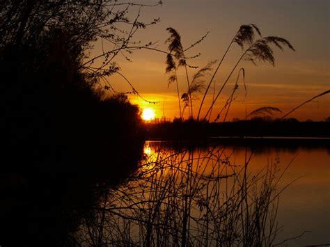 Romantischer Abend Foto & Bild  Landschaft, Bach, Fluss