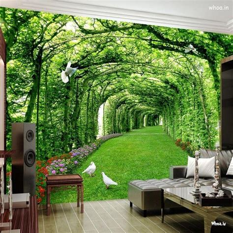 wallpapers  wall  house interior graphics