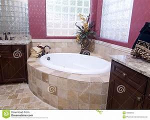 Modele De Salle De Bain Moderne : salle de bains de luxe moderne photo stock image 10059012 ~ Dailycaller-alerts.com Idées de Décoration