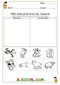 animals and domestic animals worksheets evs