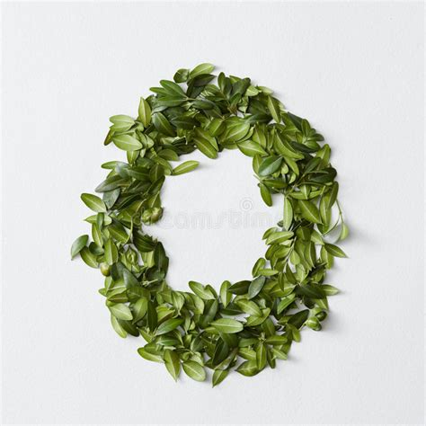 punctuation marks  green leaves stock photo image