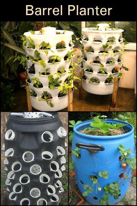 diy barrel planter plants barrel planter garden