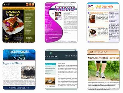 Custom Template Templates Newsletter Examples Benchmark Creation