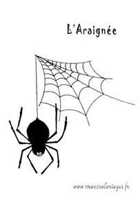 coloriages l araign 233 e tisse sa toile a imprimer