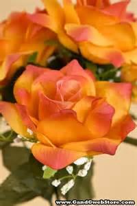 Orange Circus Rose